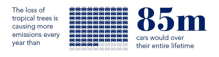 Palm Oil Car Emission logo